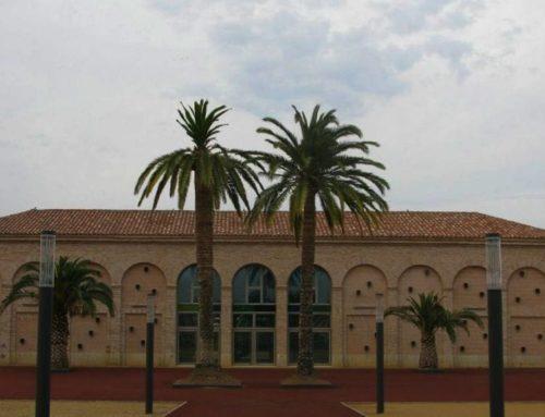 El Museu de la Mar de l'Ebre celebra el Dia Internacional dels Museus amb estrenes i activitats programades
