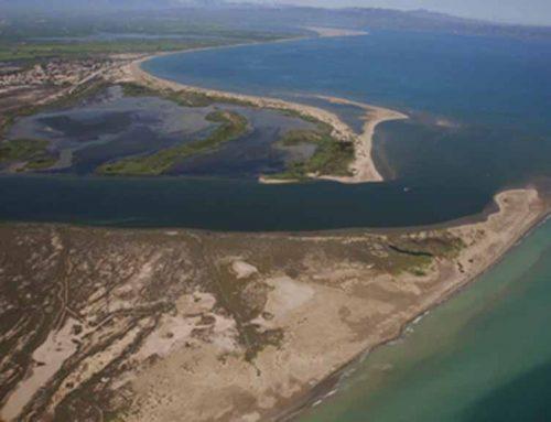 L'Ebre necessita aportar entre 1,2 i 3,5 milions de tones més de sediments per frenar la subsidència al Delta
