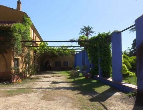Les cases rurals de l'Ebre registren només un 30% d'ocupació per la Puríssima