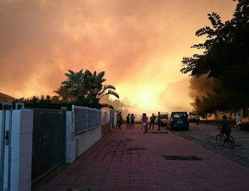 Ensurt per un incendi a Riumar que ha cremat prop de la zona residencial