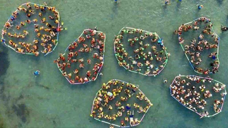 332 persones s'han aplegat a la platja de Sant Jordi per dur a terme l'activitat / Plàncton Diving