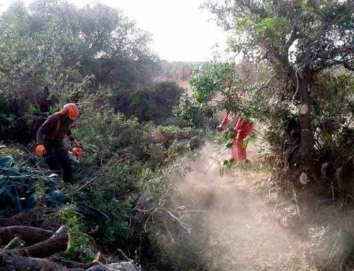 El TSJC avala el pla de gestió de l'aigua de la Generalitat impugnat per l'Aragó: els barrancs costaners del Montsià no són conca de l'Ebre