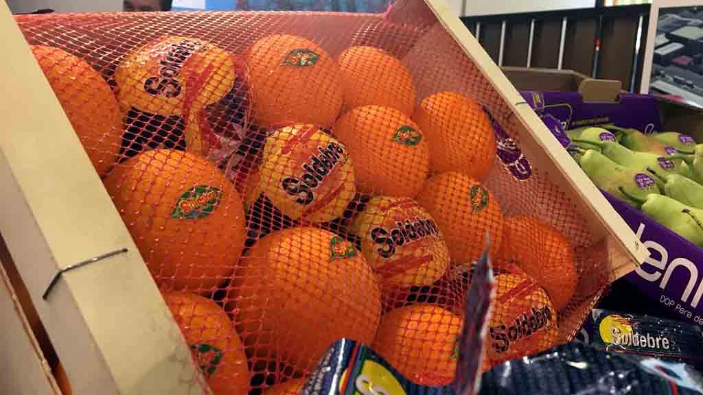citrics capsa soldebre.jpg