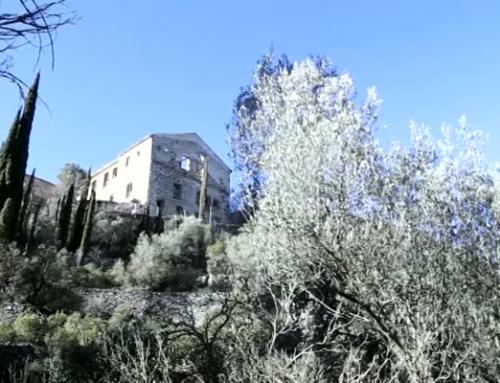 Senderisme a la Serra de Cardó