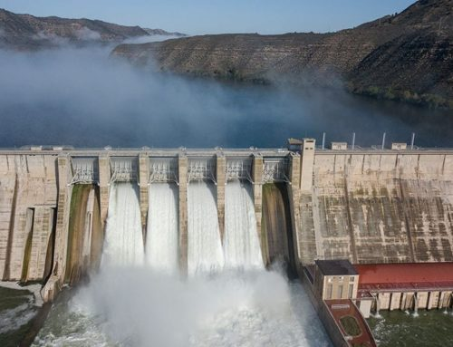 El govern espanyol licita l'estudi previ per fer arribar al Delta els sediments acumulats als embassaments de Mequinensa i Riba-roja