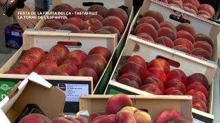 Festa de la Fruita Dolça TASTAFRUIT de  La Torre de l'Espanyol