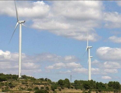La DO Terra Alta reitera l'oposició a la massificació eòlica de la comarca