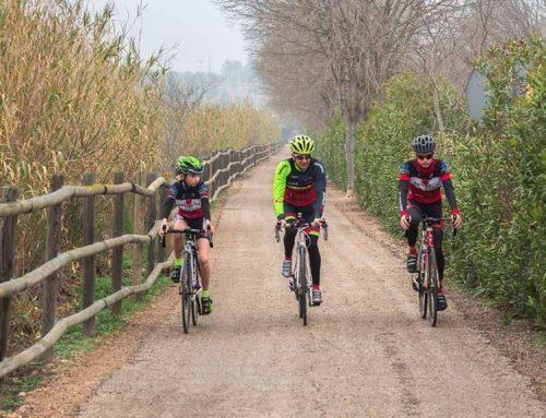 Una jornada de networking per fomentar el cicloturisme a la via verda
