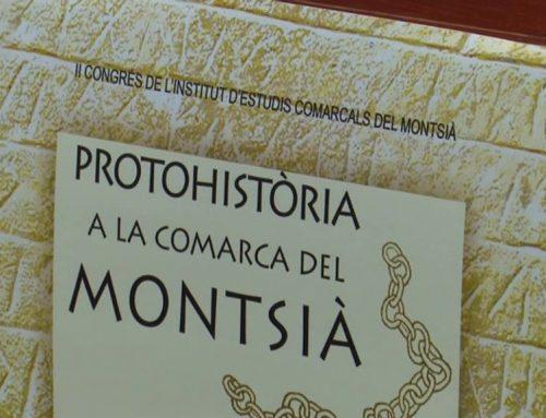 Un congrés vol posar llum al període de la protohistòria al Montsià