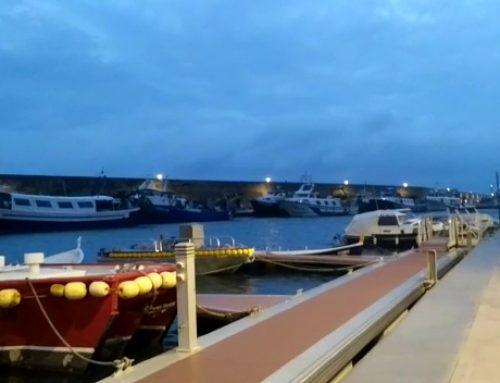 Transport escolar suspès al Montsià i flotes de pesca amarrades