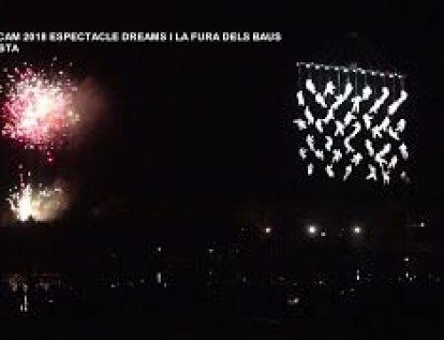 Festicam 2018:  Espectacle Dreams, La Fura dels Baus a Amposta