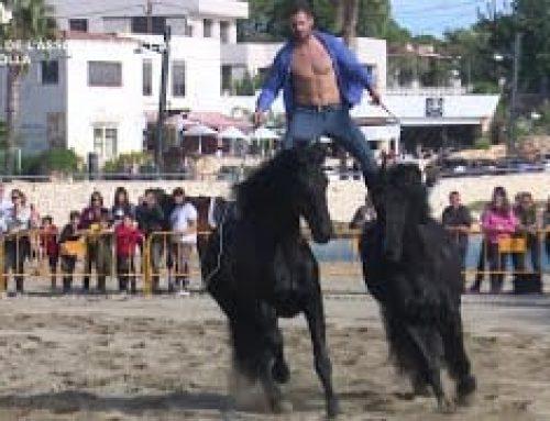 Festa de l'Associació del Cavall a L'Ampolla