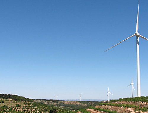 La DO Terra Alta denuncia al GAIP el tancament del portal de participació en l'avaluació ambiental de Territori