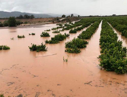 """Els pagesos demanen ajuda """"urgent"""" per reparar els camins danys per la pluja d'ahir"""