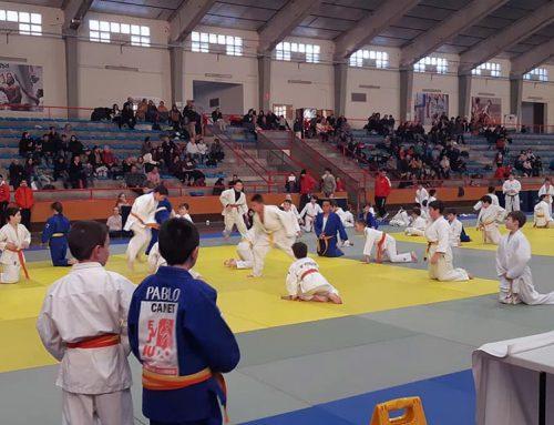 La final territorial de judo dels JEEC apleguen un centenar d'esportistes a Tortosa