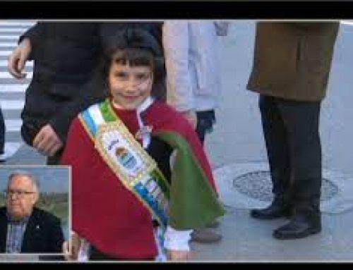Festes de Sant Antoni al Perelló