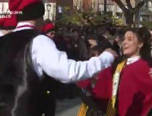 Sant Antoni 2019: Ballada de jotes, xaranga i vermut a la plaça – El Perelló