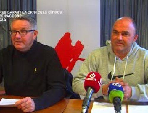 La Unió de Pagesos crearà una plataforma per fer front a la crisi dels cítrics a Tortosa