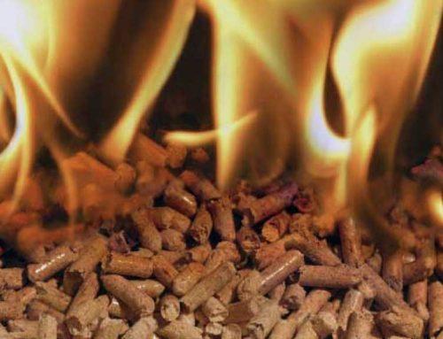 Gandesa aposta per la biomassa de cara al proper hivern