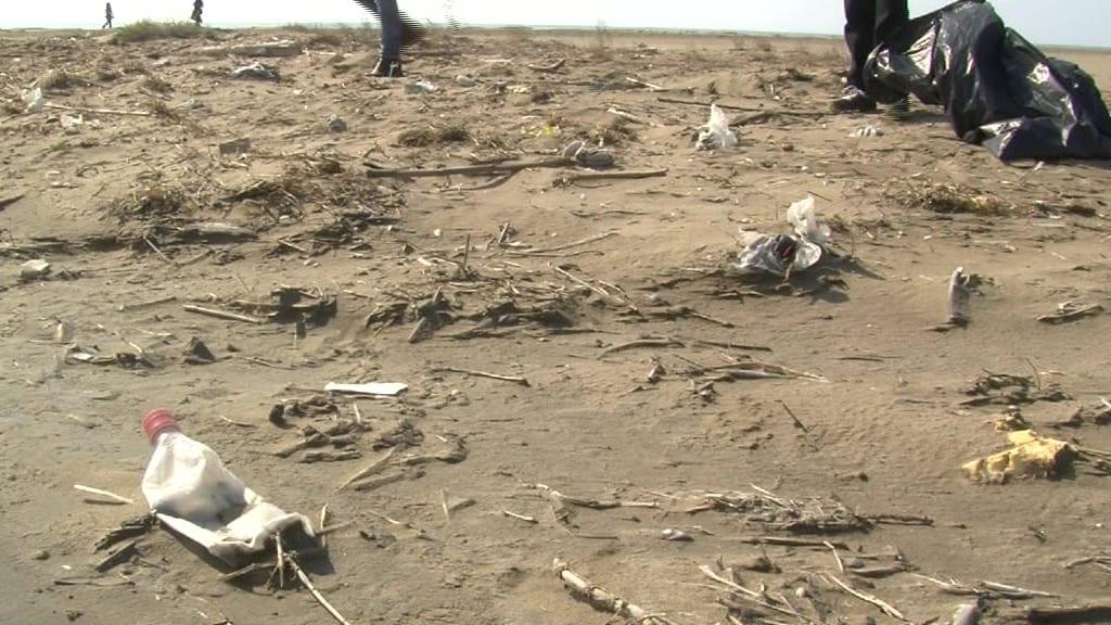 Delta Net neteja platges