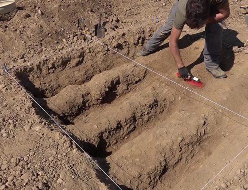 Els primers assentaments agrícoles del Delta, a estudi en una recerca arqueològica