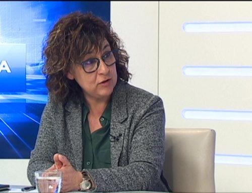 """Viña, estranyada per la reacció """"virulenta"""" de Roigé sobre la reestructuració sanitària a Tortosa"""