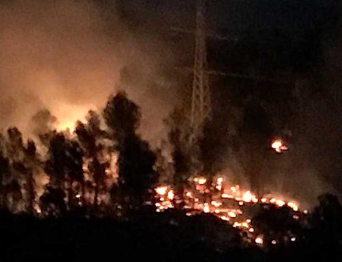 Crema sense control un incendi a prop de Benifallet