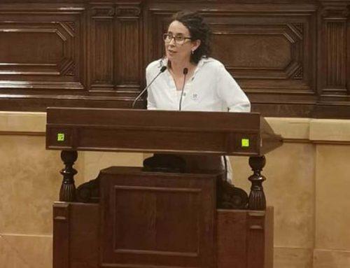 """Irene Fornós: """"Hem de trobar, entre tots, la millor manera per protegir les oliveres mil·lenàries"""""""