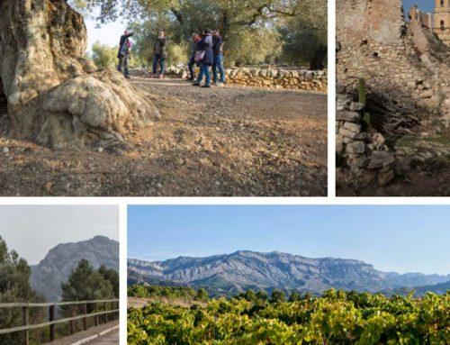 """Jornada professional """"Quin model de gestió turística volem per la Terra Alta?"""" a Horta de Sant Joan"""