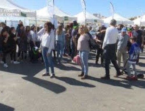 Street Food – IV Ruta de la Tapa de l'ostra a L'Ampolla