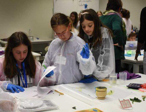 Prop de 200 alumnes de 5è i 6è de primària exposen els seus projectes científics al campus Terres de l'Ebre