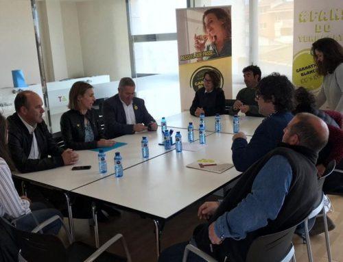 La DO Terra Alta celebra que la Generalitat derogui la llei d'implantació d'energies renovables