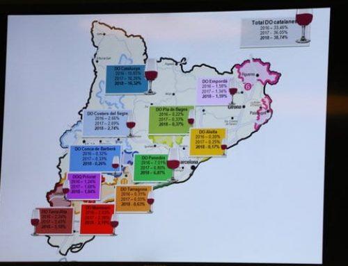 La quota de mercat de vi s'incrementa gràcies a l'expansió de DO com Terra Alta
