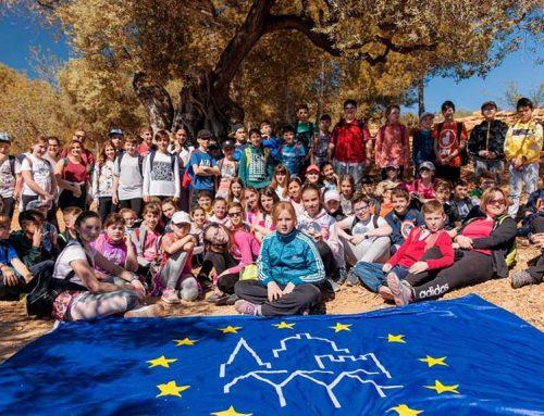 Activitats escolars amb oliveres mil·lenàries a 14 pobles, gràcies al Premi Històries del Patrimoni Europeu