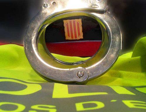 Detingut un home per un robatori violent en un establiment comercial de Tortosa