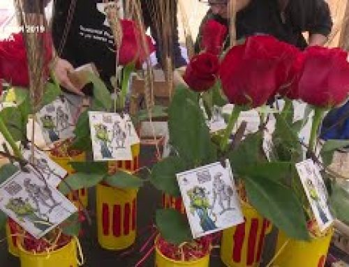 Sant Jordi 2019 a Amposta