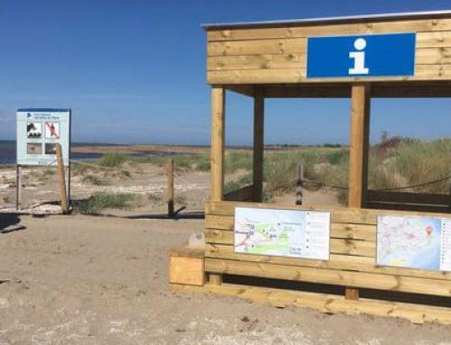 Delimiten les àrees de nidificació d'ocells marins i litorals al delta de l'Ebre