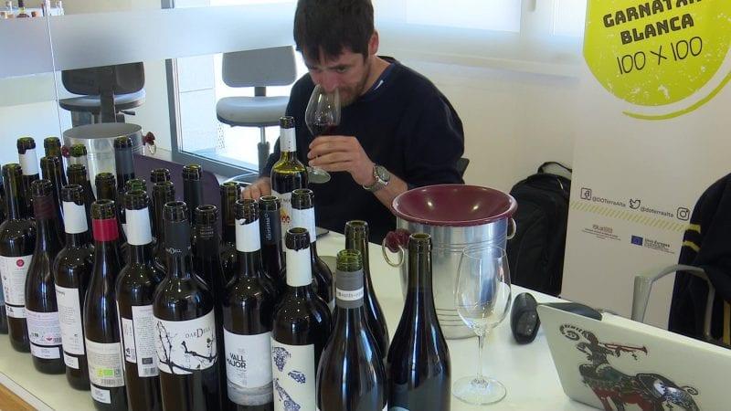 Javier Luengo Guia Peñín vins DO Terra Alta