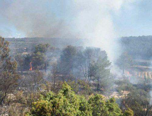 Extingit un incendi a Batea que ha activat sis dotacions dels Bombers