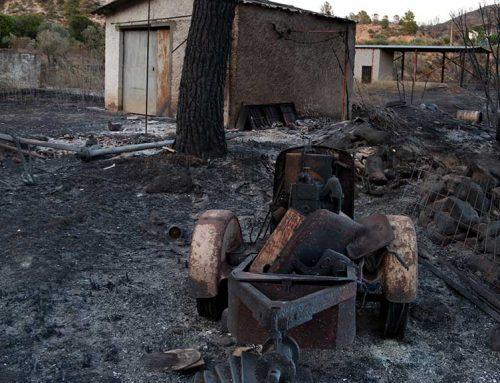 El Govern aprova mesures urgents per a pal·liar els danys causats pels temporals i incendis