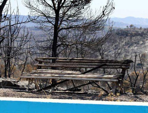 Treball destinarà 1,3 MEUR a contractar persones a l'atur per reforestar la zona de l'incendi de la Ribera d'Ebre