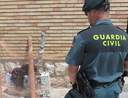 Denunciats dos caçadors furtius de caderneres, a Santa Bàrbara