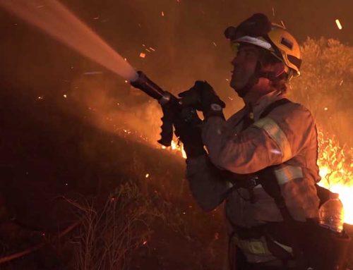 ALERTA: Protecció Civil demana extremar les precaucions pel risc d'incendi forestal durant la jornada de dimarts