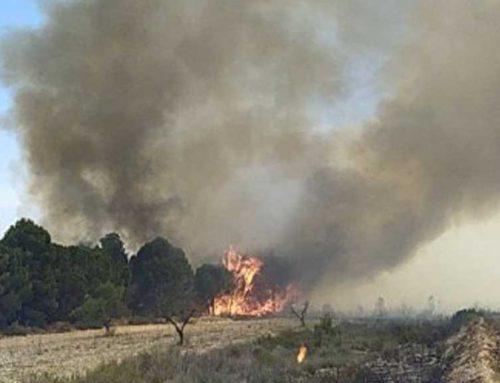 ALERTA: Declarat un incendi que afecta a Batea i a part del Matarranya