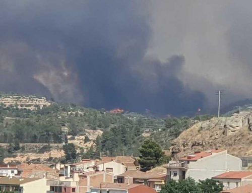 [ACTUALITZACIÓ] Ja són 40 hectàrees les que han cremat en un incendi sense control entre Vinebre i la Torre