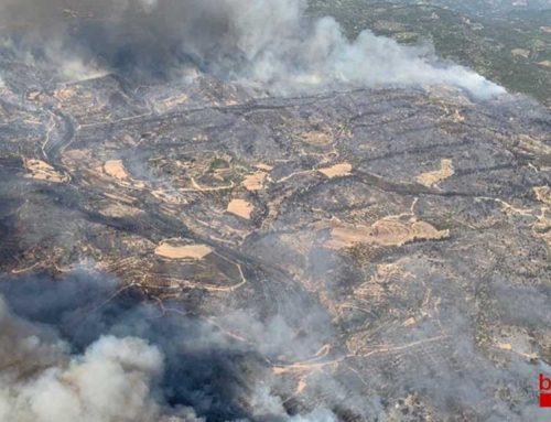 [ACTUALITZACIÓ] El pitjor incendi de l'estiu a Catalunya que ja ha cremat més de 500 hectàrees