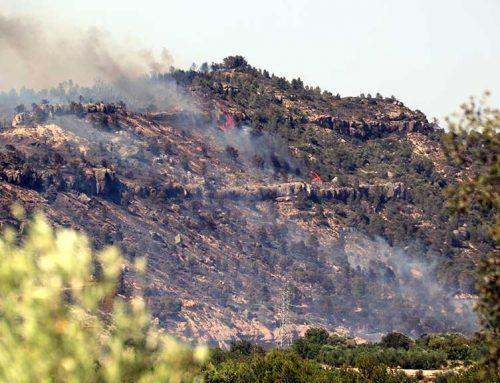 [ACTUALITZACIÓ] El foc arrassa una granja a la Torre de l'Espanyol