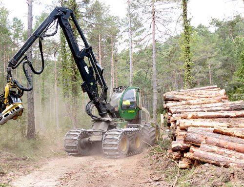 Continua el 'ball de bastons' entre el GEPEC i el DARP sobre la tala d'arbres als ports