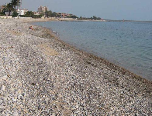 Peníscola no vol ser menys que Alcanar i Compromís també vol una platja canina