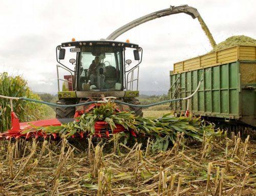 El Departament d'Agricultura aprova 209 sol·licituds d'ajut a la diversificació econòmica de les zones rurals